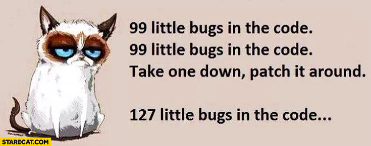 99-little-bugs-in-the-code